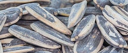 Pipas de girasol tostadas, 2021-01-05, DD 040-080 FS.jpg