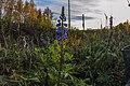 Pirkanmaa, Finland - panoramio (119).jpg