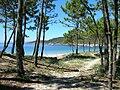 Playa de Barra (66848841).jpg
