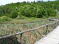Plitvice lakes (23).JPG