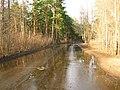 Pludi druvciema 2011 - panoramio (60).jpg