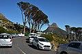 Pod Stolovou horou, Kapské město - Jihoafrická republika - panoramio (5).jpg