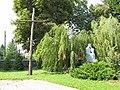 Podlaskie - Sokoły - Sokoły - Kościelna 1 - Bazylika Wniebowzięcia NMP 20110827 08.JPG