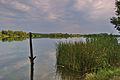 Pohled na Chomoutovské jezero, okres Olomouc.jpg