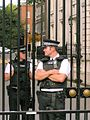 Police officers at Downing Street.jpg