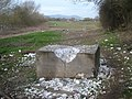 Polystyrene on the public footpath - 2 - geograph.org.uk - 764533.jpg