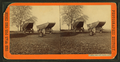Pontoon boats and wagons, by Taylor & Huntington.png