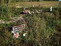 Prairie Road Cemetery Tutwiler MS 002.jpg