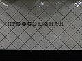 Profsoyuznaya (Профсоюзная) (5509414068).jpg