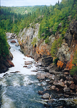 Central Canadian Shield forests - Pukaskwa National Park in Ontario.