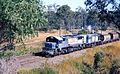 QR loco 2123 and a 1460 class haul a westbound empty grain train near Darra, ~1990.jpg