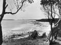 Queensland State Archives 1118 Towards Mooloolaba from Alexander Headland December 1930.png
