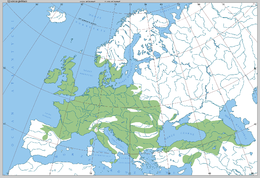 Quercus petraea - range in Europe by Boratynski.png