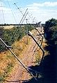 Radio telescopes - geograph.org.uk - 108090.jpg