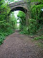Railway Bridge - geograph.org.uk - 417469.jpg