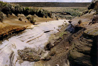 Volcanic plateau - Rangipo Desert of the North Island Volcanic Plateau. Numerous tephra layers are visible.