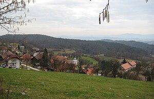 Rašica, Ljubljana