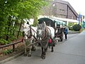 Rathen - Pferdekutsche vor dem Berghotel Bastei - geo.hlipp.de - 1520.jpg
