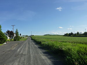 Reardan, Washington - Spring in Reardan