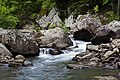 Richland Creek in the Richland Creek Wilderness, AR.jpg