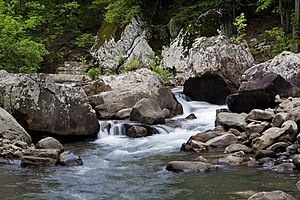 Water flows through a creekbeed filled with boulders