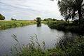 River Lark near Isleham - geograph.org.uk - 1426116.jpg