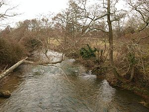 Wolf Solent - Image: River Yeo at Bradford Abbas geograph.org.uk 1768516