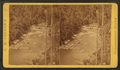 River just above Rapids, by Palmer, J. A..png