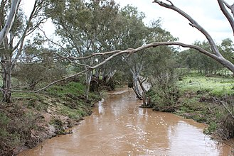 Wakefield River - Wakefield River in flood at Whitwarta in 2010