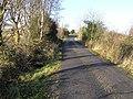 Road at Carrickrevagh - geograph.org.uk - 1118310.jpg