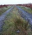 Road near Loch Gorm, Islay - geograph.org.uk - 272002.jpg