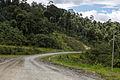RoadsOfSabah Kalabakan-Sapulut-02.jpg