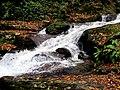 Roaring Fork Falls Black Mountain Campground Pisgah Nat Forest NC 4348 (37238369054).jpg