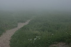 Fog at Roncesvalles Roncesvalles-top-pass.JPG