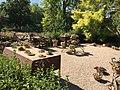 Royal Botanical Garden in Madrid 29.jpg