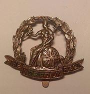 Royal Norfolk Regiment Cap Badge.jpg