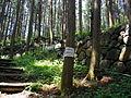 Ruins of Karasuyama Castle.JPG