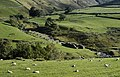 Ruins of old mine workings, near Hartsop - geograph.org.uk - 984410.jpg