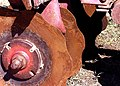 Rusty discs of a disc harrow.jpg