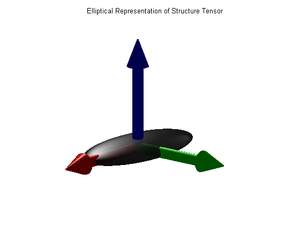 Structure tensor - Ellipsoidal representation of the 3D structure tensor.