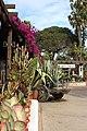 San Diego - Old Town, CA, USA - panoramio (16).jpg