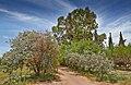 San Pedro de Atacama-CTJ-IMG 6334.jpg