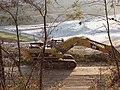 Sand quarry at Buschbell - geo.hlipp.de - 23035.jpg