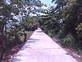 Santa Maria and Bocaue area - panoramio (2).jpg