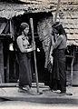 Sarawak; two native Kenyah women husking rice. Photograph. Wellcome V0037409.jpg