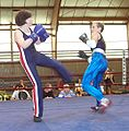 Savate fouetté-1.JPG