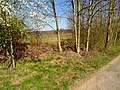 Schlegelweg Pirna (33918335625).jpg