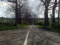 School Road, Tullindoney Townland - geograph.org.uk - 1250926.jpg