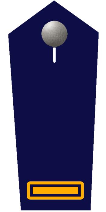 Brandrat/-rätin