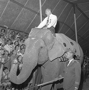 William F. Knowland - Knowland atop an elephant at a circus in Orange County, California, during his unsuccessful run for California governor 1958
